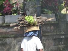 Street scene, Kedewatan